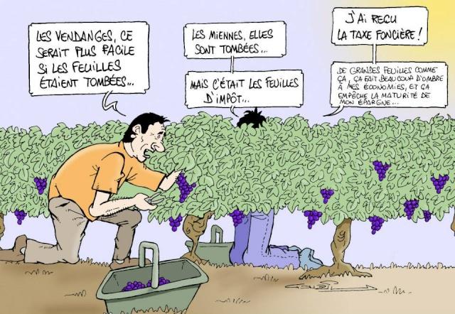 Les dessins humoristiques du Journal Sud Ouest sur l actualité du Médoc 10710711