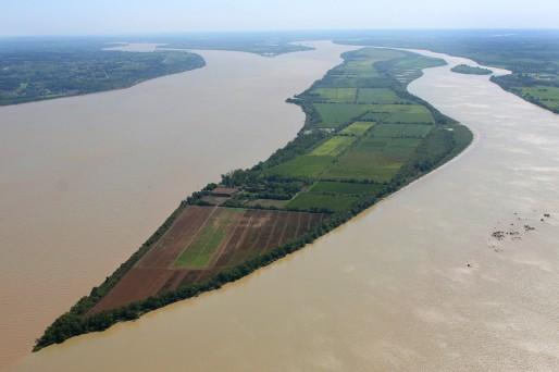 Estuaire de la Gironde : les îles refont surface ( de Orianne Dupont ) 6970-510