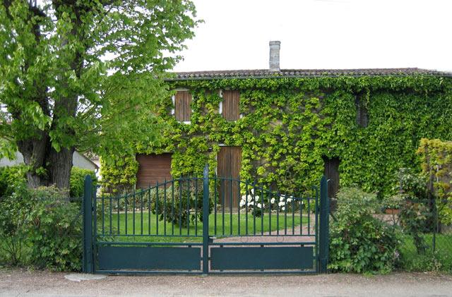 Domaine Grand Lafont  Domain10