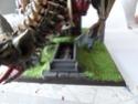 Les reliques de la mort Sam_0715