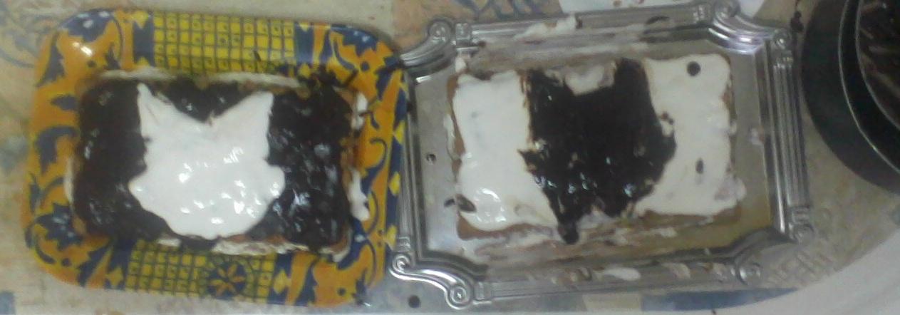 Gâteaux félins. Photo010