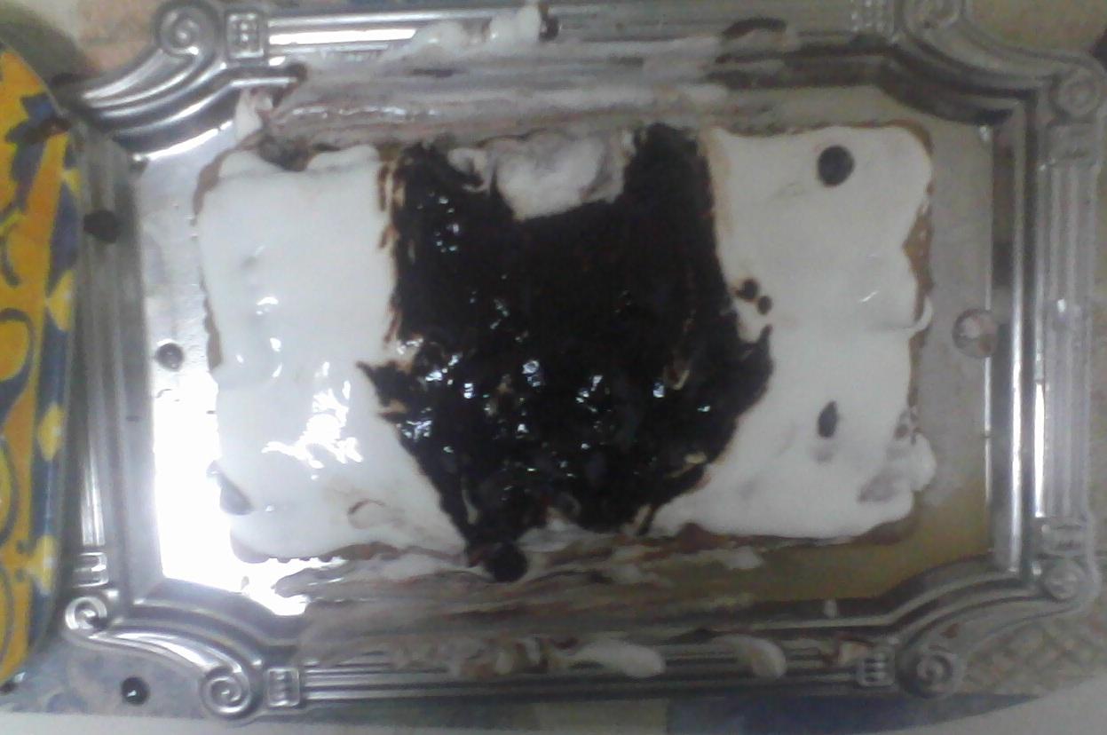 Gâteaux félins. Photo011