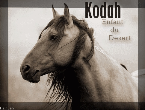 La boite a chocolat ! ^-^ Kodah10