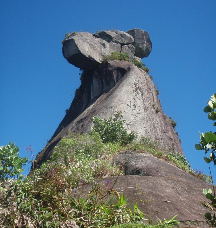 Pico de Papagaïo - Abraão - Brésil 24577910
