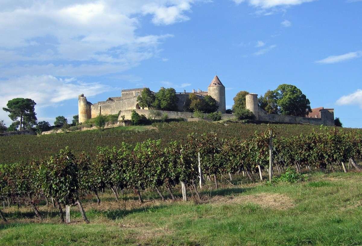 Château de Benauge - Arbis - Gironde - France [Journées du Patrimoine] A411