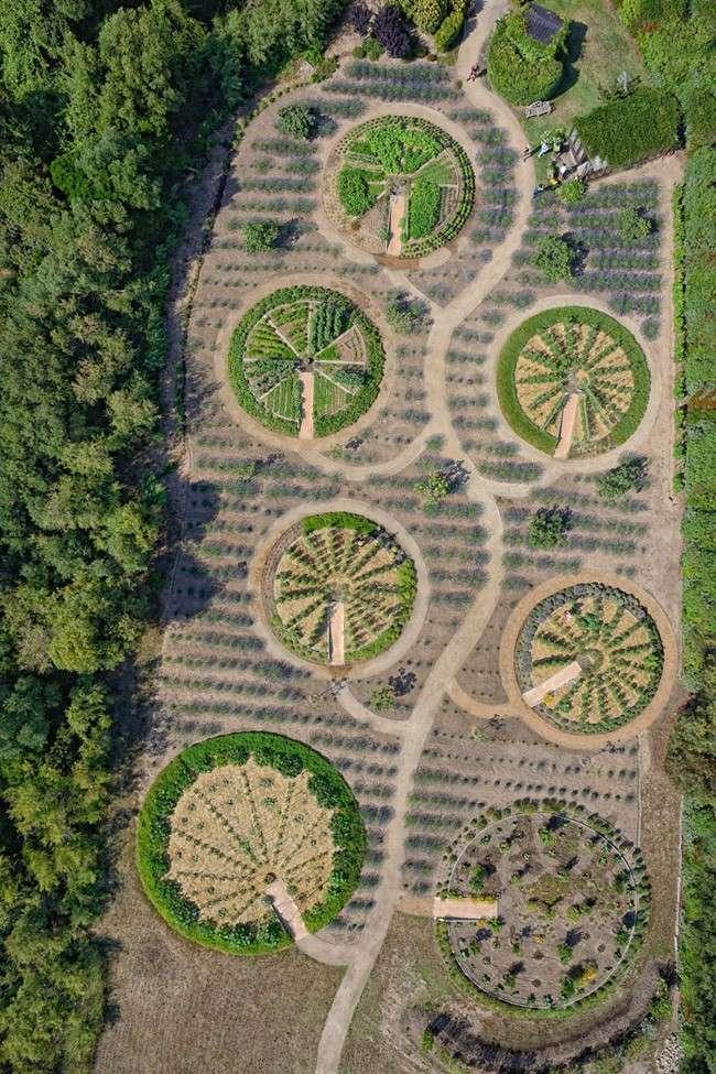 Les jardins de Cala Rossa - Porto-Vecchio - Corse - France Dsc_0210