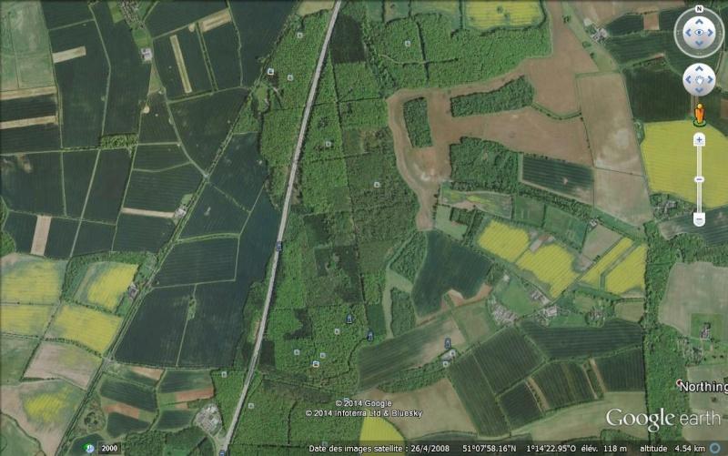 Forêt bleue - Bois de Hal - Hal - Belgique Ff10