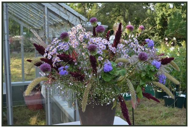 Foire aux plantes abbaye d'aywiers  3-4-5 octobre 01212