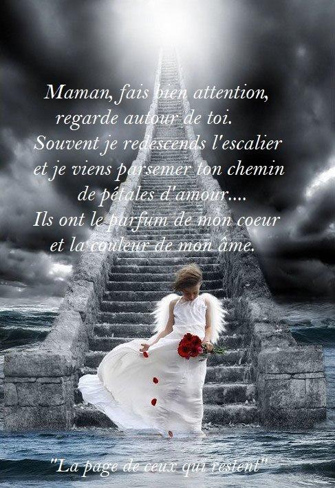 mon bébé d'amour guillaume - Page 4 57478510