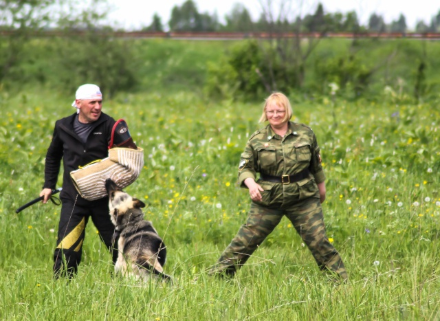 Соревнования по многоборью  со служебными собаками Img_3012