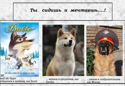 Занятия по  послушанию в г. Северск. S9856610