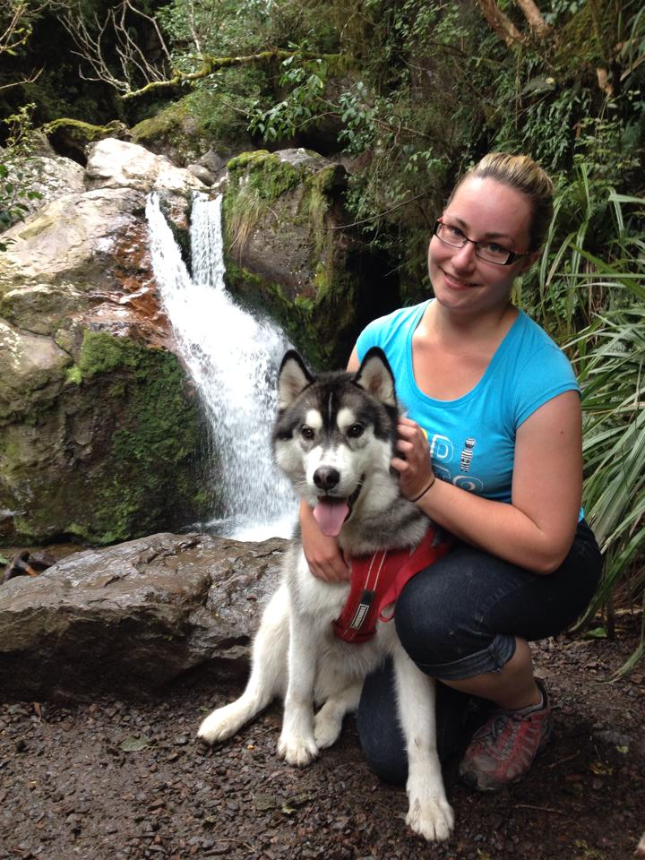 What's Your Husky Story? - Page 2 Orionm10
