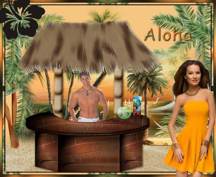 Edition 14 Aloha10