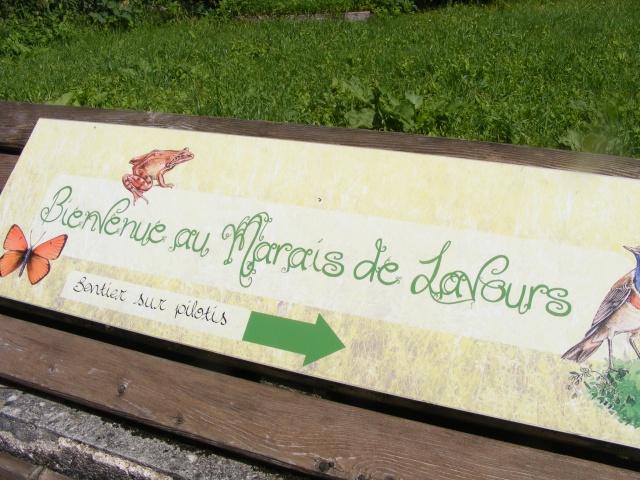 Marais de Lavours Dscf9235