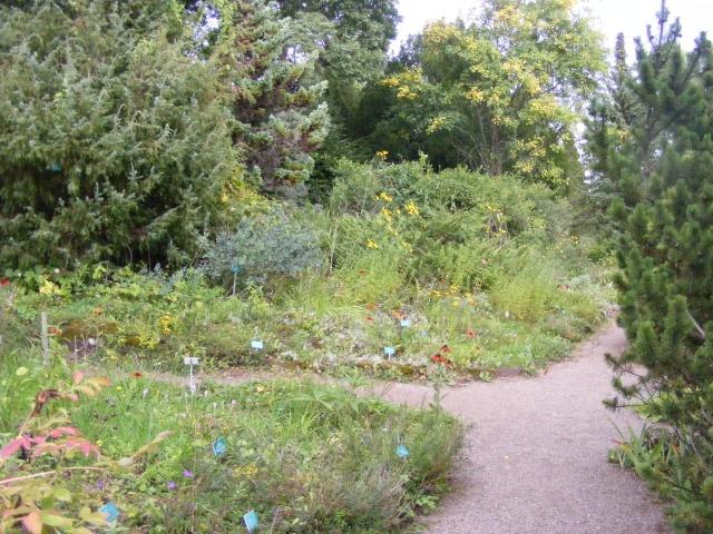 Jardin botanique Saverne (67) Dscf9534