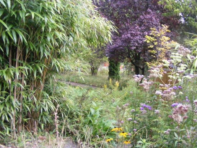 Jardin botanique Saverne (67) Dscf9537