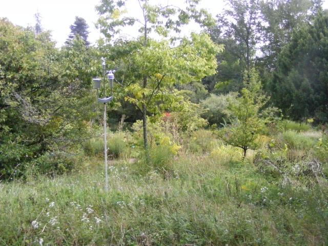 Jardin botanique Saverne (67) Dscf9538
