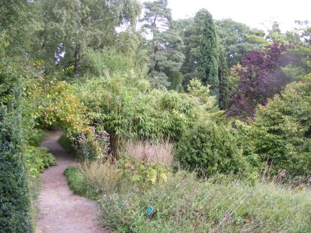 Jardin botanique Saverne (67) Dscf9539