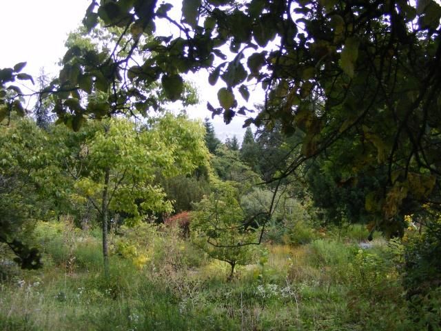 Jardin botanique Saverne (67) Dscf9540