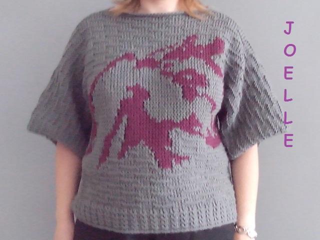 Mes tricotins en folie Img_2035