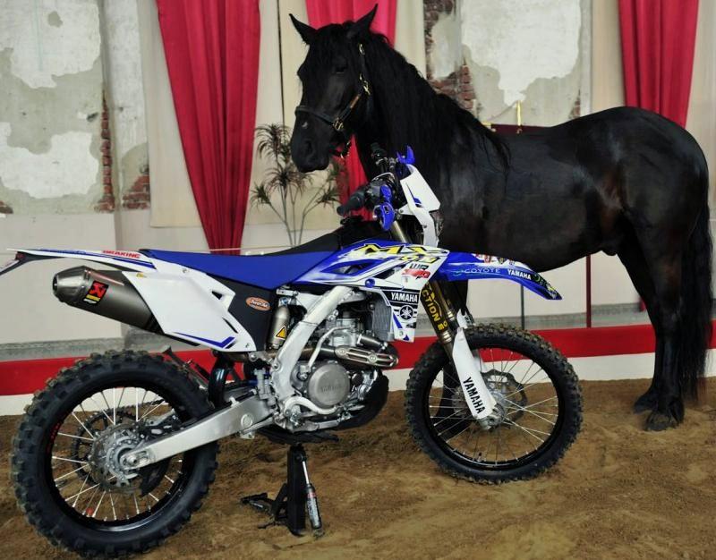Motocross Wéris - 20 juillet 2014 ... 1686