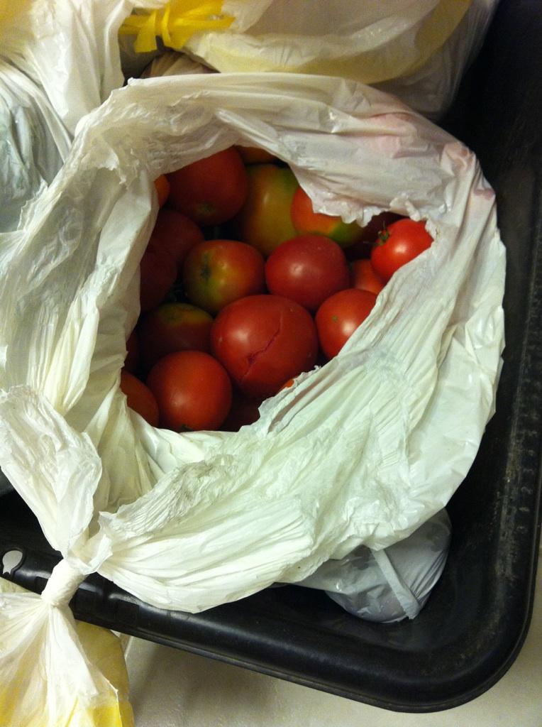 Annie's Salsa Tomato12