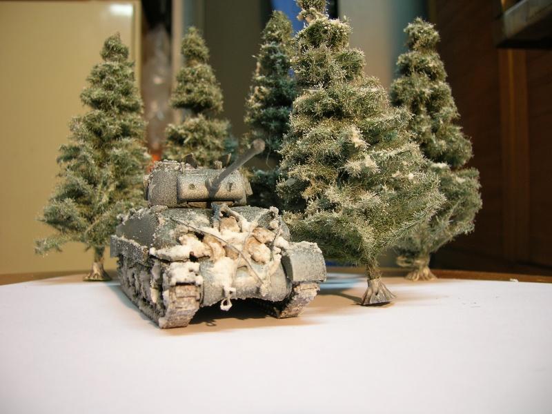 M4A1 Sherman [Revell, 1/72] Dscn3124