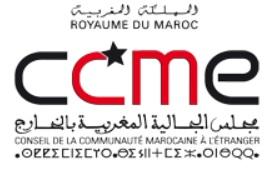 Le Strip-tease de NAJAT VALLAUD-BELKACEM à Matignon Ccmelo10