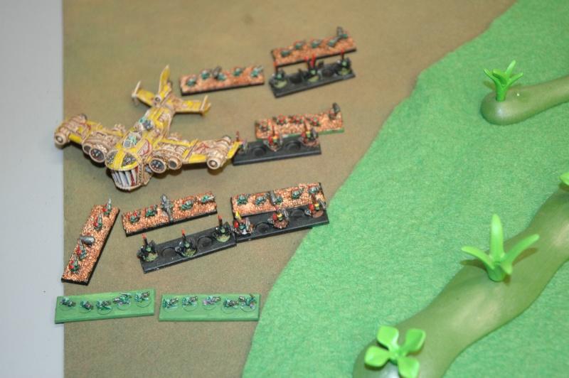 Wargh - Garde Impériale - 3000pts - Page 3 Dsc_0014