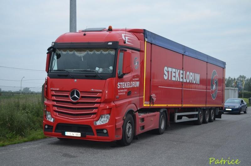 Stekelorum (Oostvleteren) 026p10
