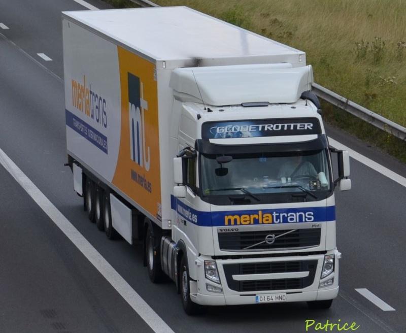 Merla Trans 185pp12