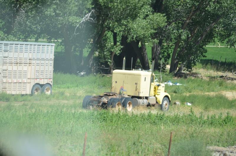 Ein paar Trucks Image12