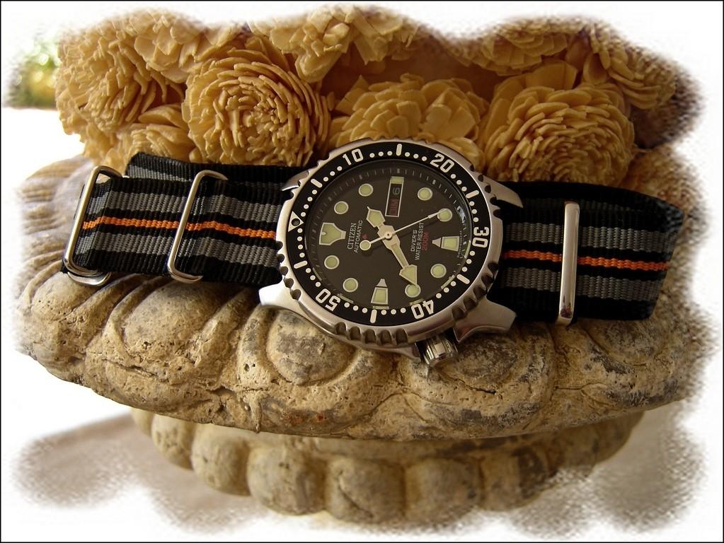 [Photo de la montre du vendredi, sur le portail] La montre du vendredi 3 Octobre ! Rtdsc015