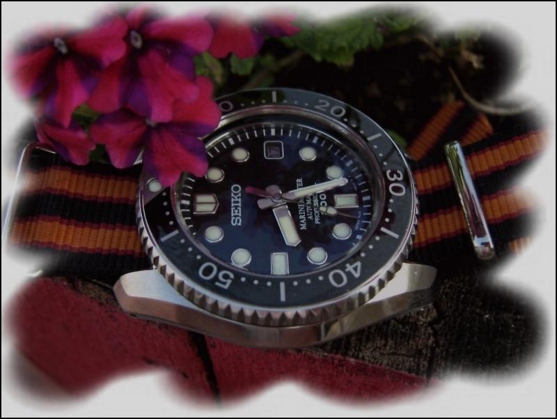 La montre du vendredi 18 juillet Rtimg_14