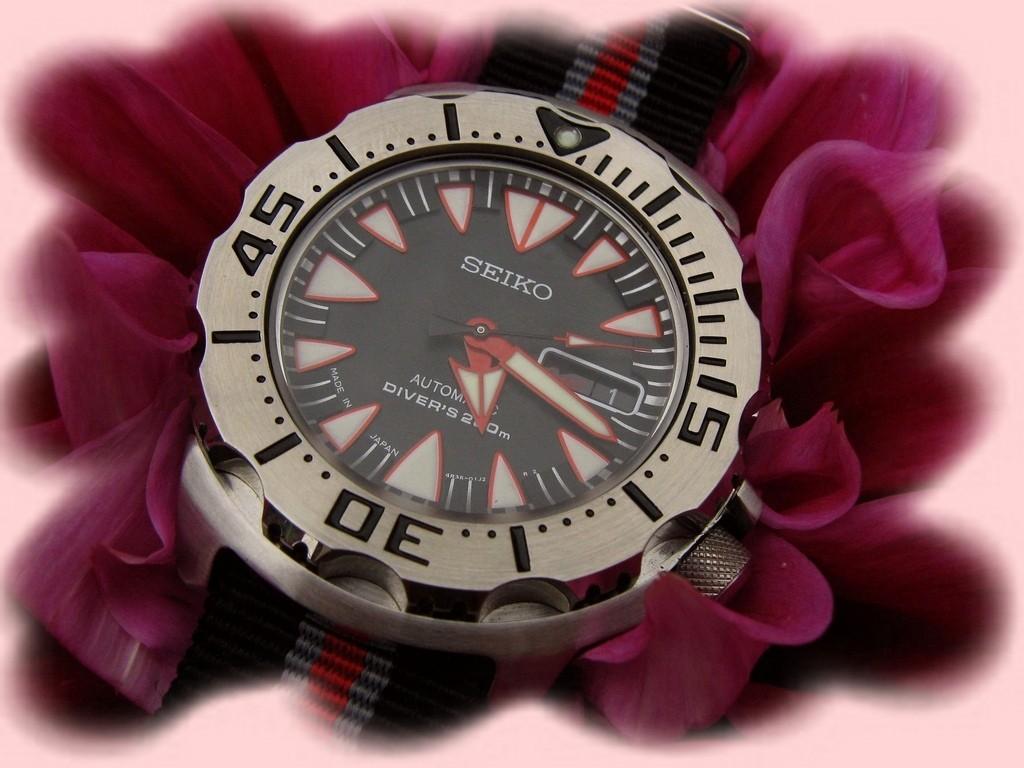 La montre du vendredi 8 août Rtimg_28