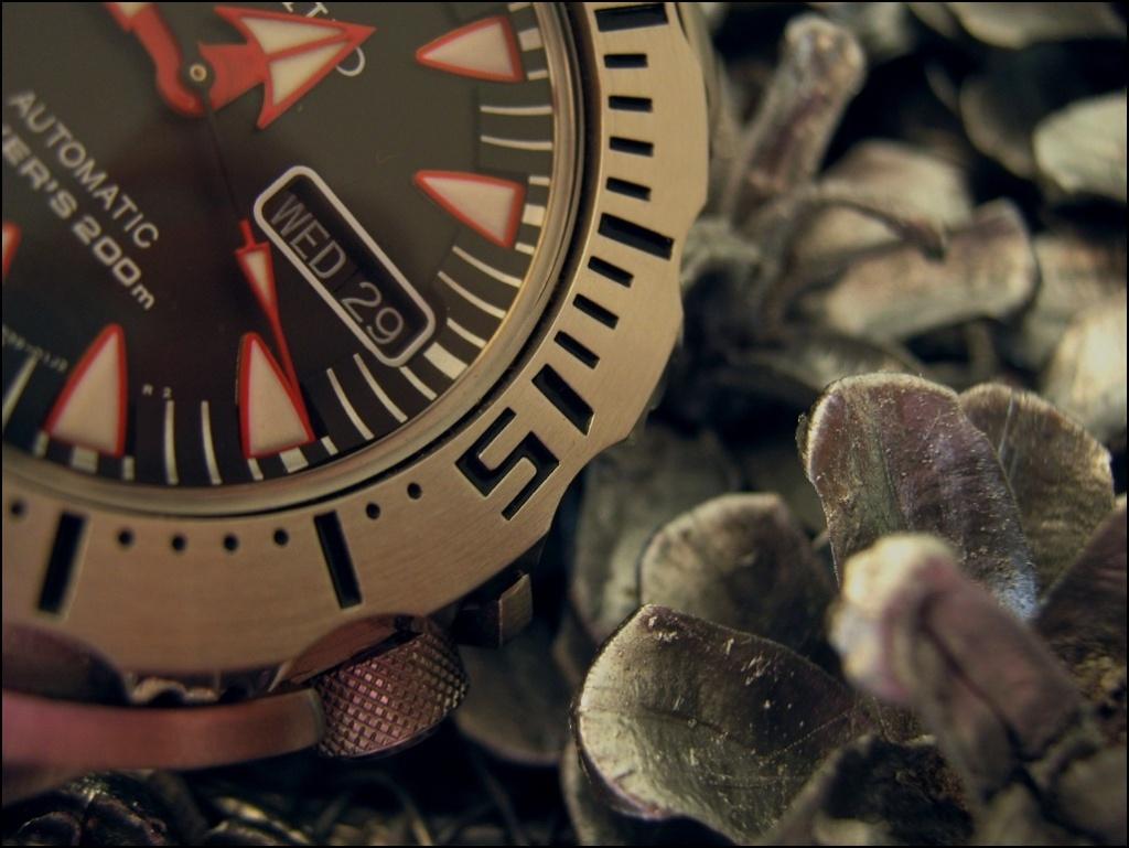 DIVER - Votre montre du jour - Page 32 Rtimg_51
