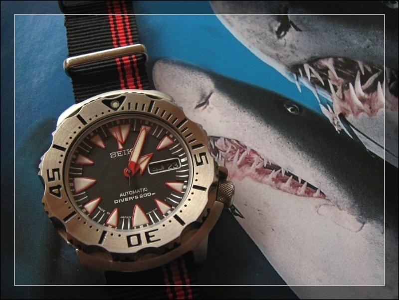 La montre du 12 décembre Rtimg_54