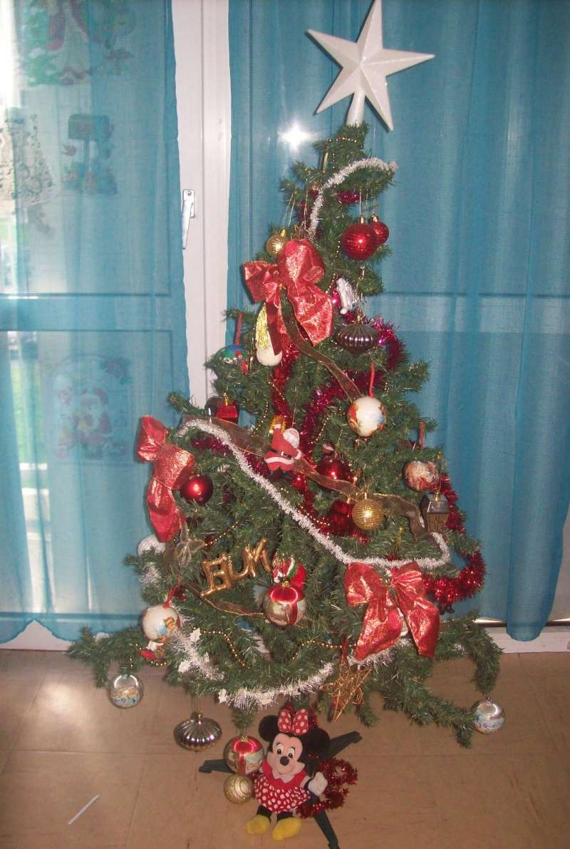 Votre décoration de Noel - Page 4 101_0110