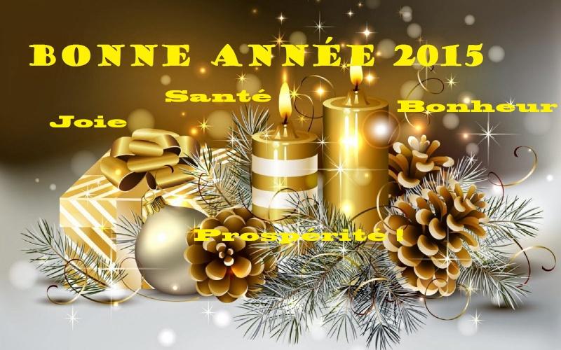 Bonne année ! Happy12