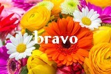 Scrapbooking et bricolage de Grizelda Bravo_14