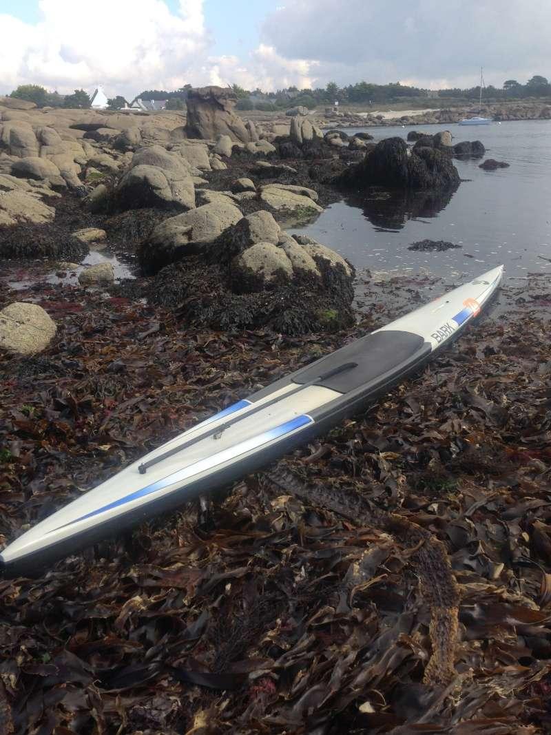 Vends prone paddleboard Bark 17'8 30313