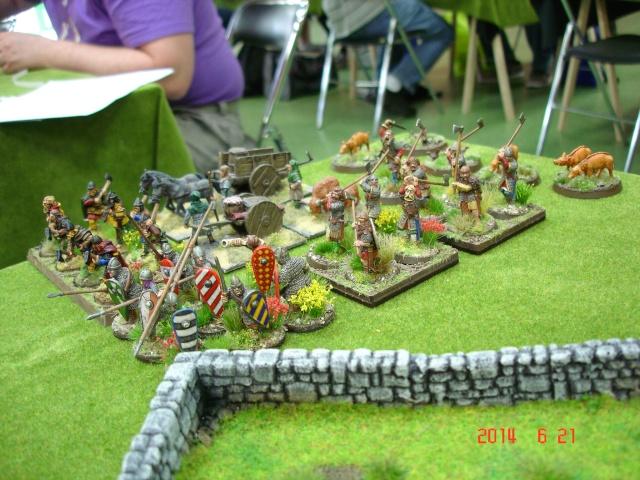 Levée en Masse 2014: Commémoration du millénaire de la bataille de Clontarf Dsc02161