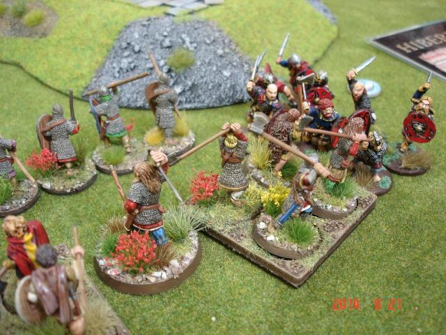 Levée en Masse 2014: Commémoration du millénaire de la bataille de Clontarf Dsc02175