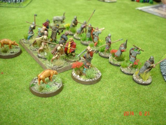 Levée en Masse 2014: Commémoration du millénaire de la bataille de Clontarf Dsc02176