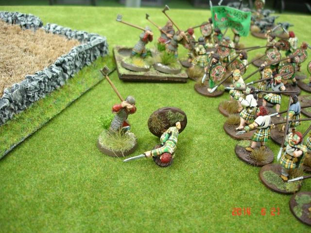 Levée en Masse 2014: Commémoration du millénaire de la bataille de Clontarf Dsc02178