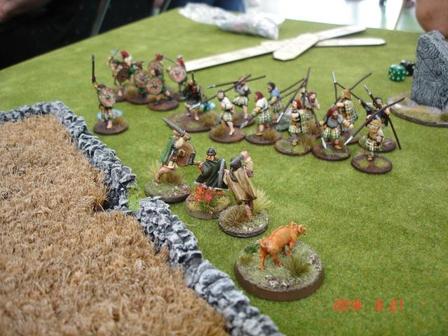 Levée en Masse 2014: Commémoration du millénaire de la bataille de Clontarf Dsc02180