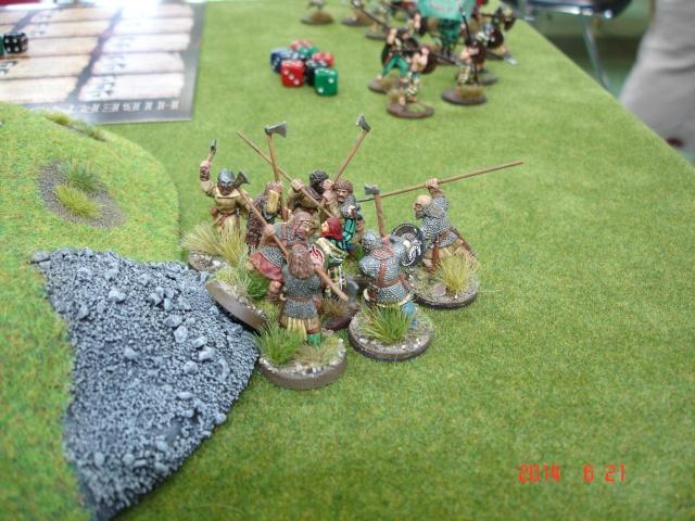 Levée en Masse 2014: Commémoration du millénaire de la bataille de Clontarf Dsc02181