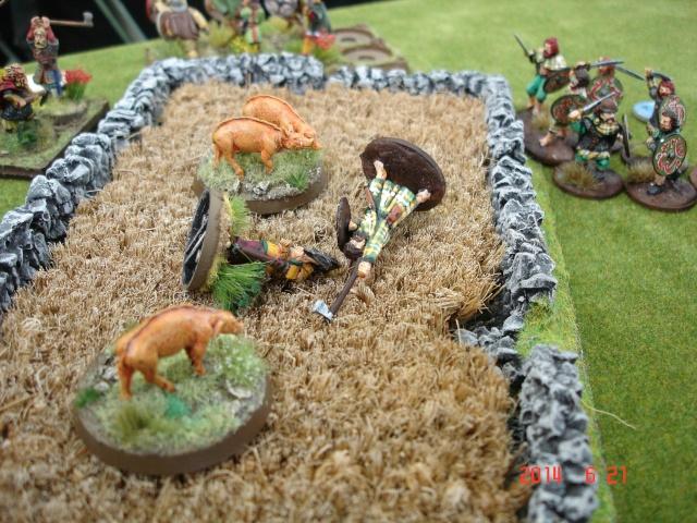 Levée en Masse 2014: Commémoration du millénaire de la bataille de Clontarf Dsc02183