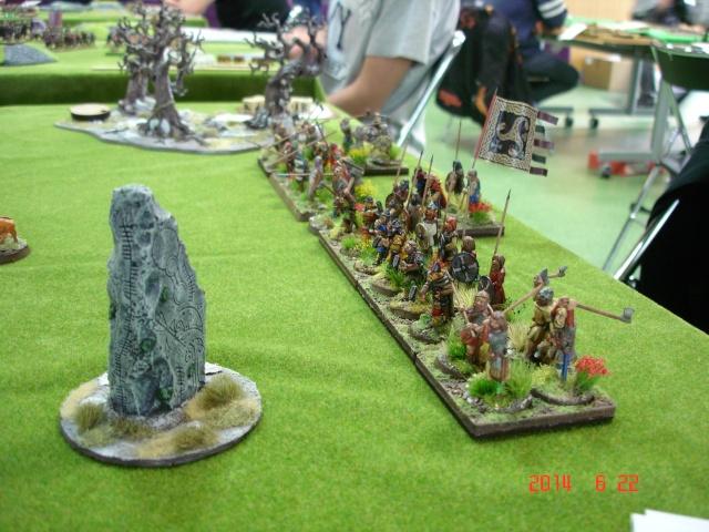Levée en Masse 2014: Commémoration du millénaire de la bataille de Clontarf Dsc02188
