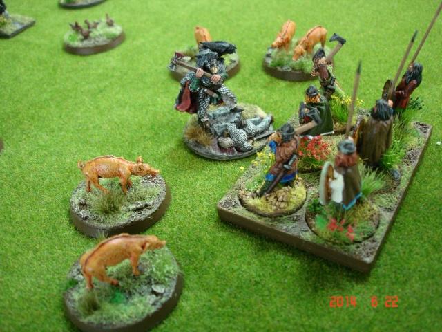 Levée en Masse 2014: Commémoration du millénaire de la bataille de Clontarf Dsc02210